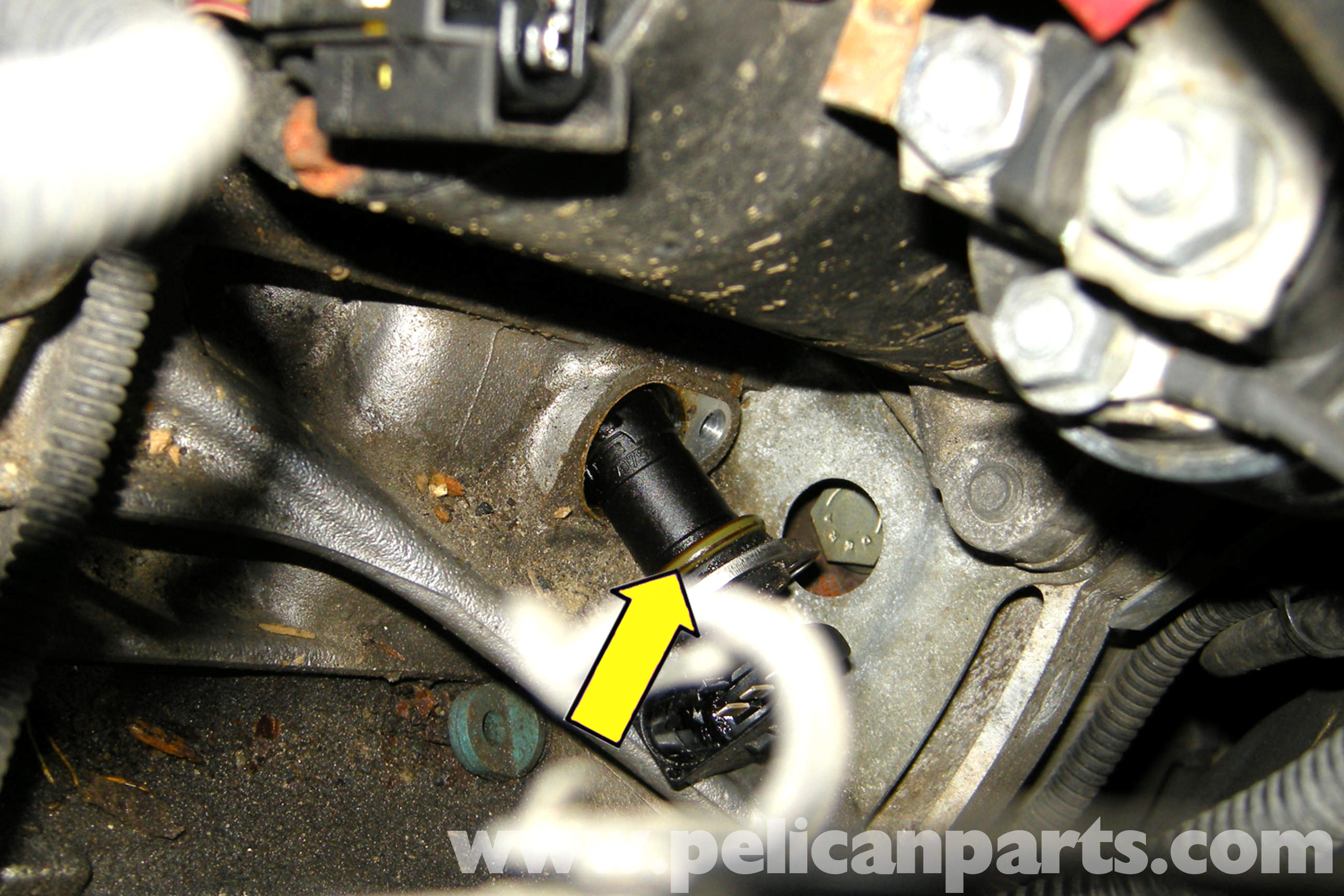 Bmw Exhaust Camshaft Position Sensor Location Bmw Free