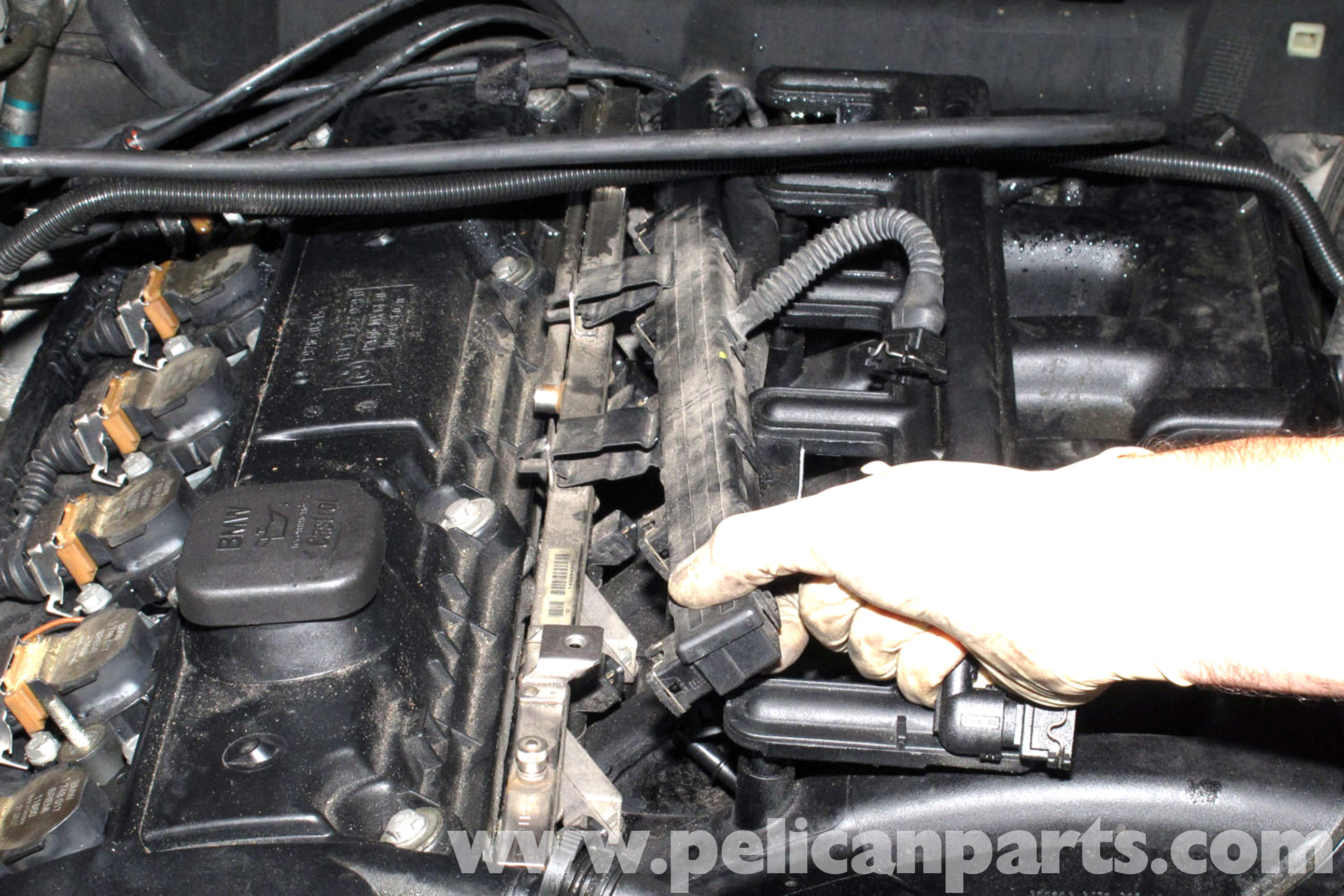 pic07 bmw e46 fuel injector replacement bmw 325i (2001 2005), bmw 325xi