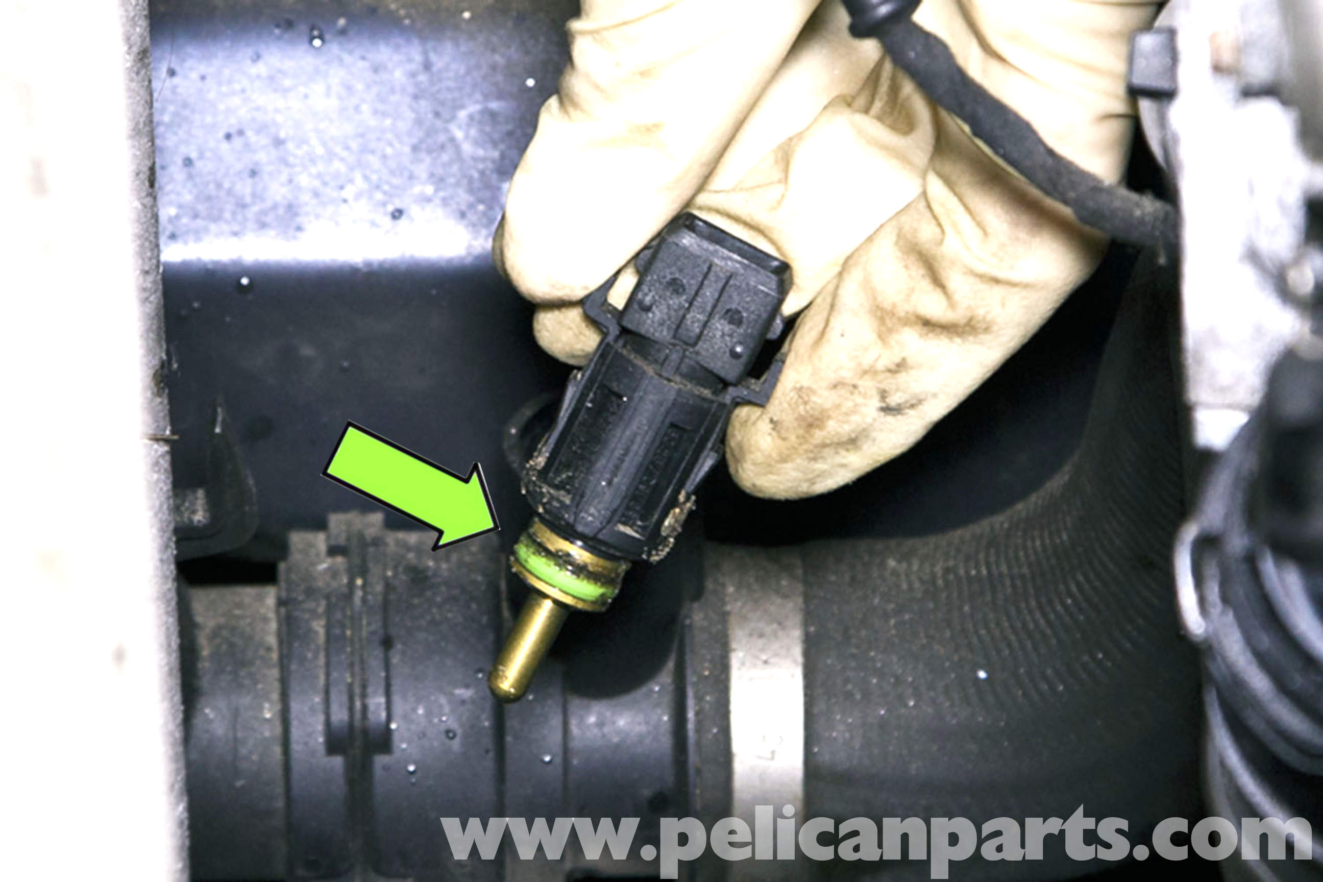 Bmw E46 Radiator Outlet Temperature Sensor Replacement
