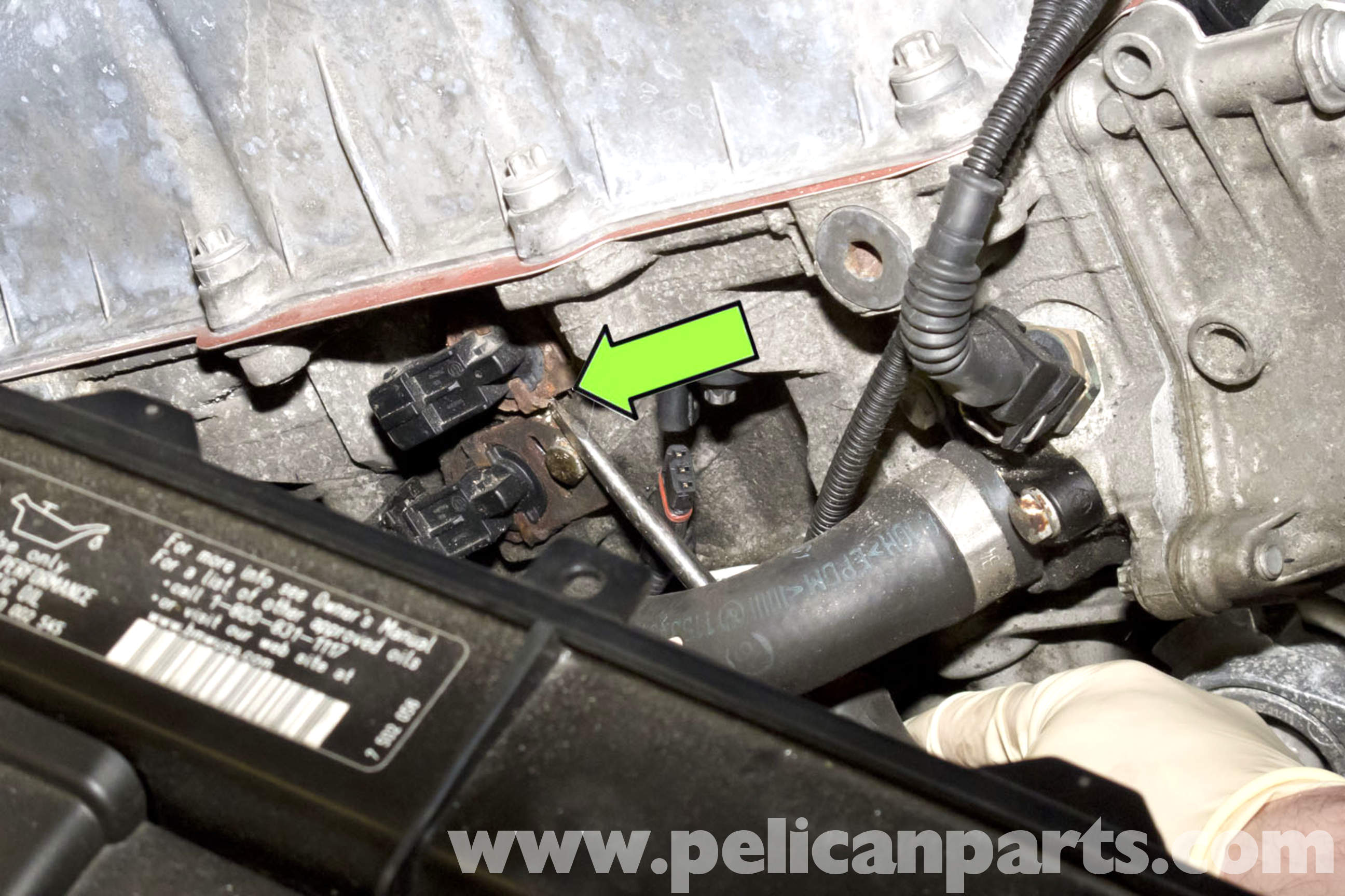 BMW E90 VANOS Solenoid Replacement | E91, E92, E93 | Pelican Parts