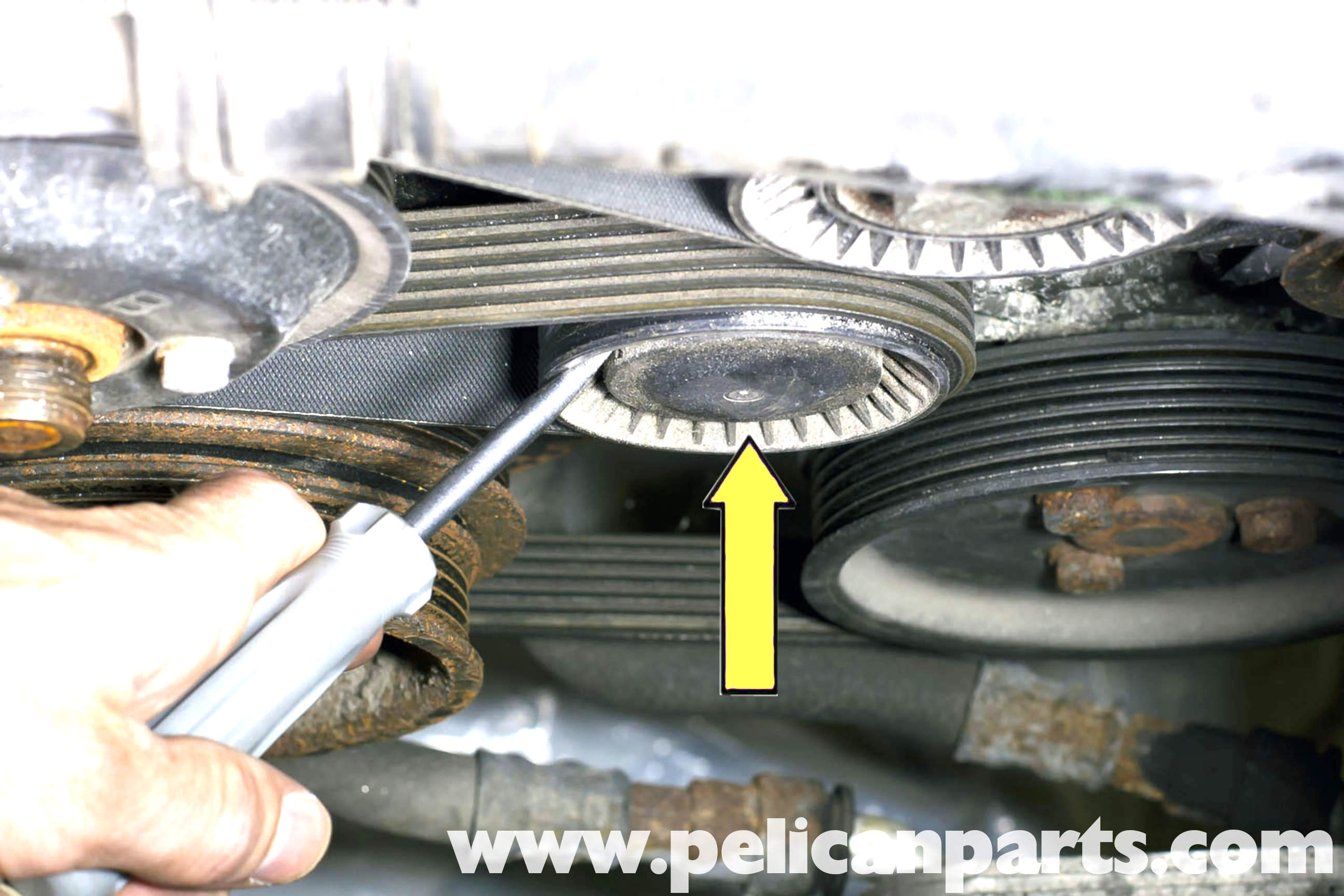Bmw Z3 Drive Belt Replacement 1996 2002 Pelican Parts