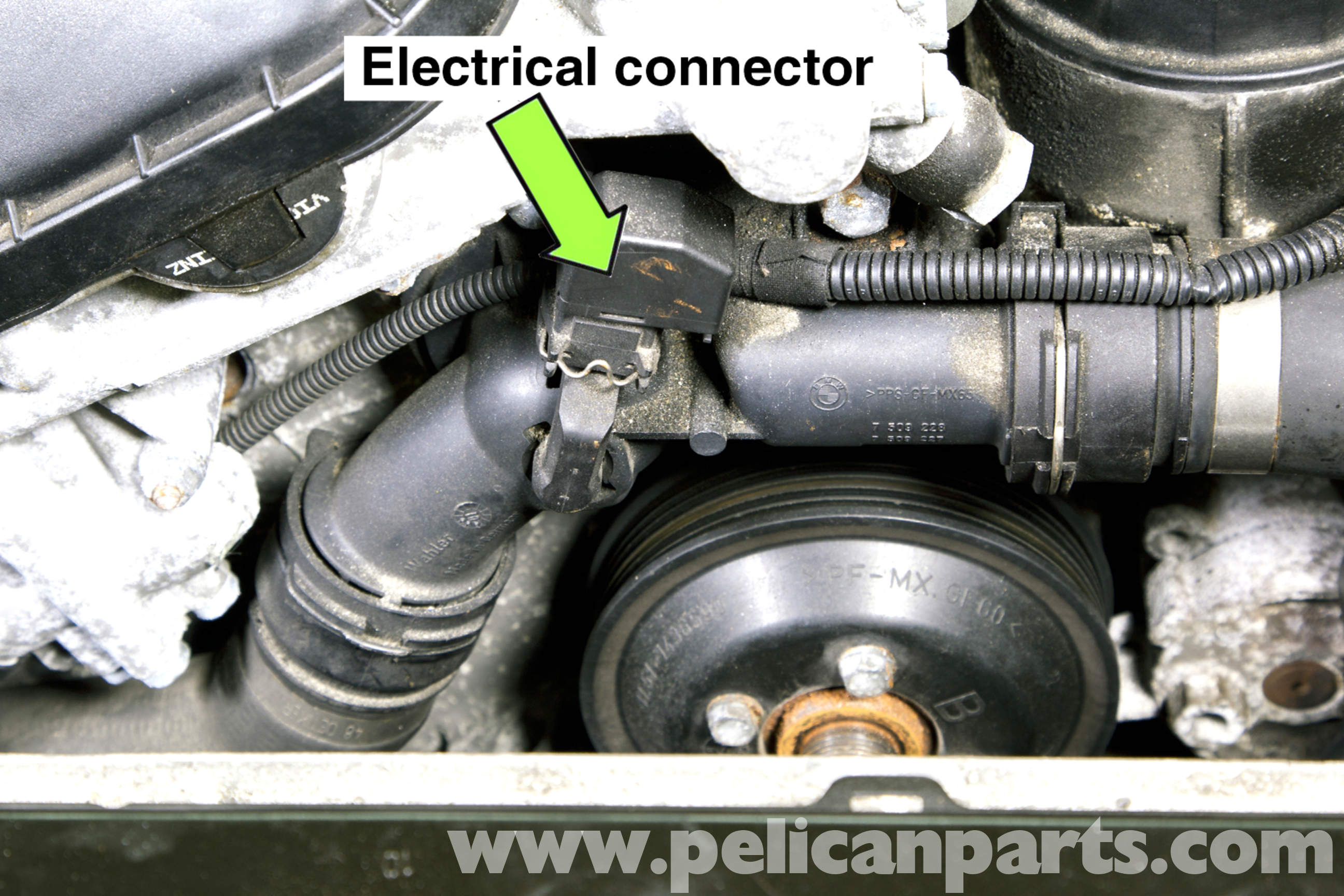 Bmw Z3 Thermostat Replacement 1996 2002 Pelican Parts Diy Maintenance Article