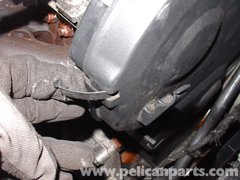 Vacuum Or Coolant Hoses Near The Timing Belt Cover