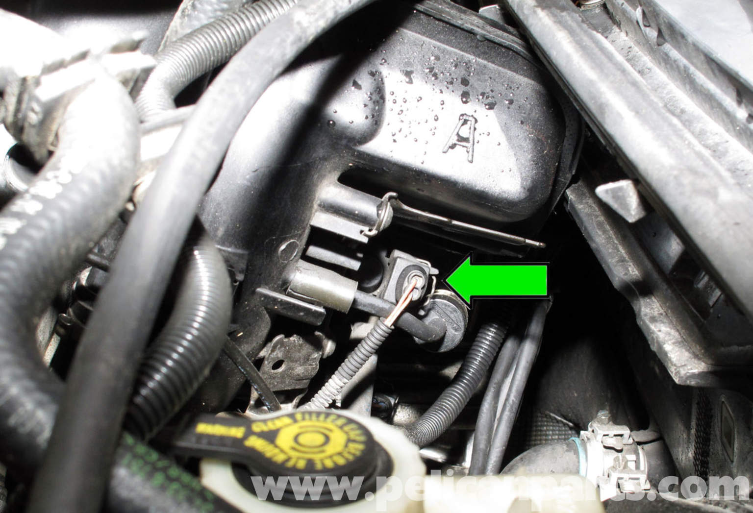 351 windsor wiring diagram  351  get free image about
