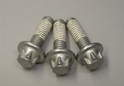 Shown here are three brand new Torx bolts from Porsche for the intermediate shaft cover.
