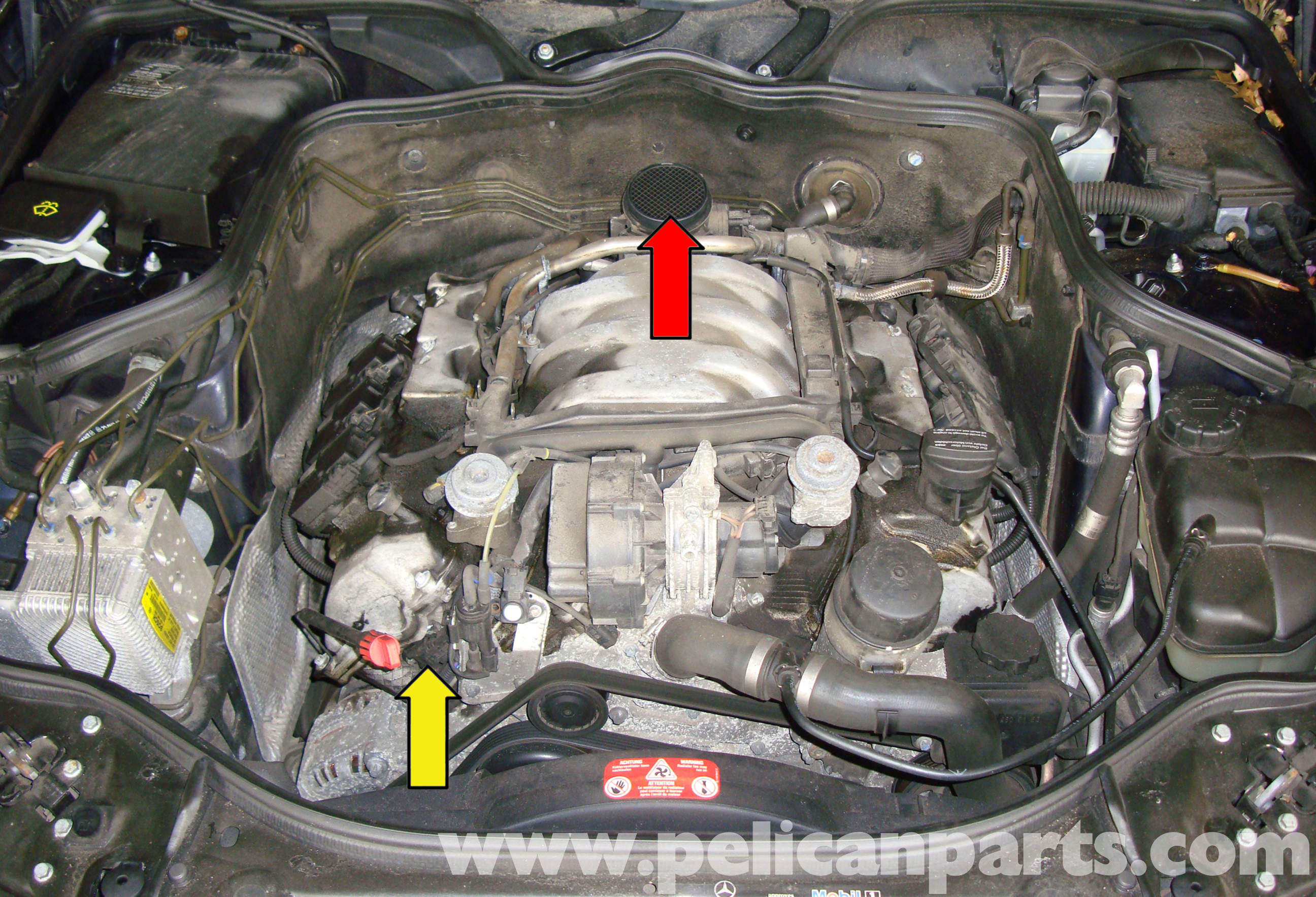 2008 Acura Tl Fuel Pump Manual Wiring Diagram Mercedes W211 Image Not Found Or Type Unknown