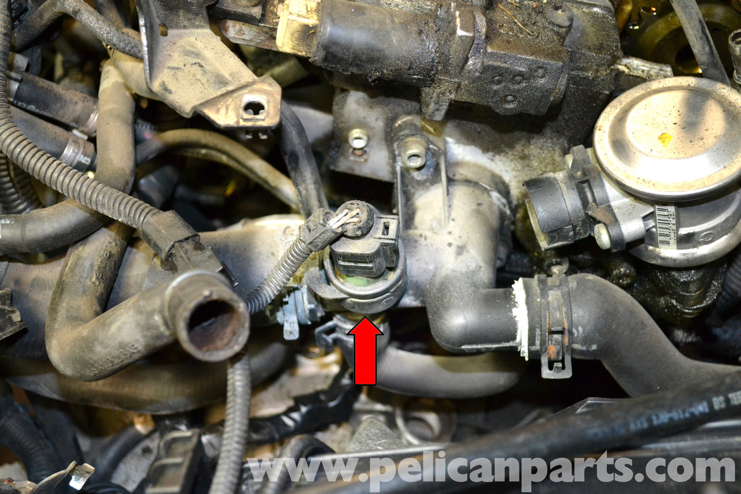 04 audi a4 coolant temp sensor location  04  free engine